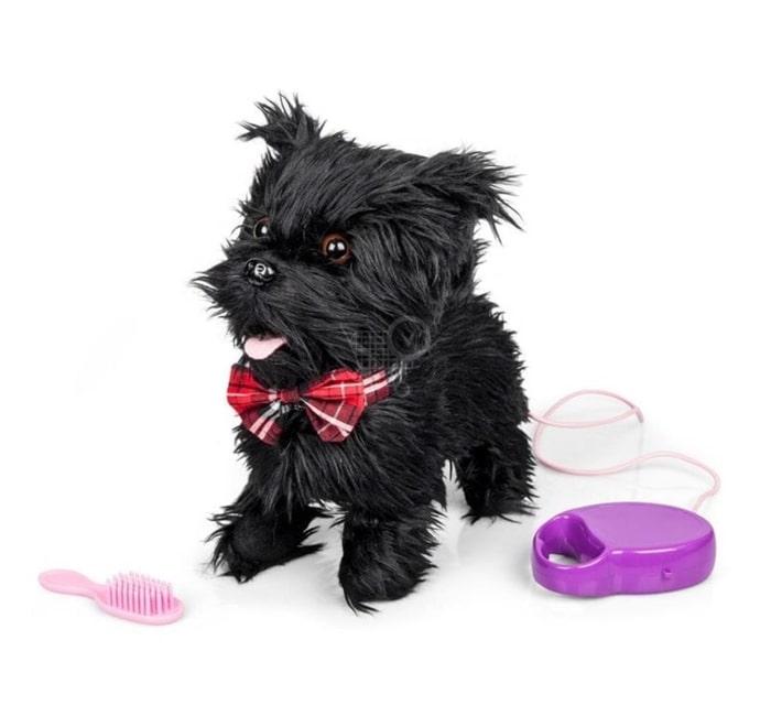 Cão Scottie