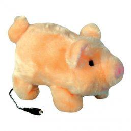 Porquinho Pudgy