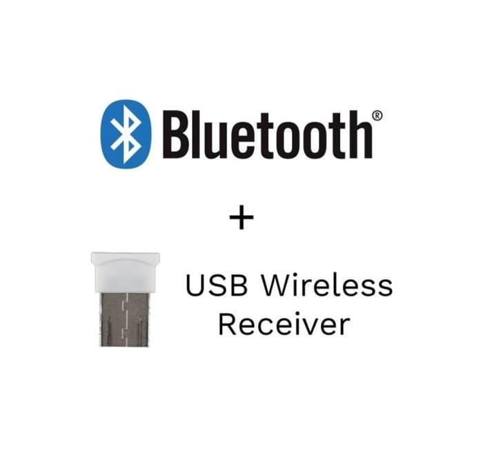 BIGtrack Wireless (Recetor)